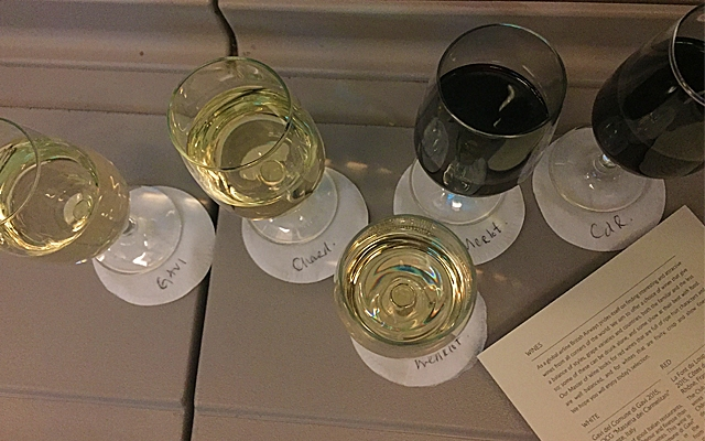 Wine Tasting at 35,000 feet