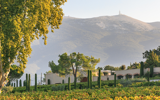 Ventoux, the Crossroads of the Rhône