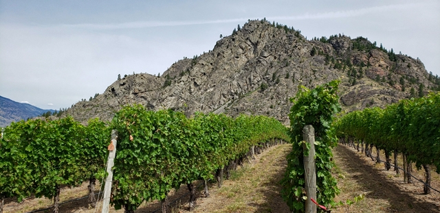 Sunrock Vineyards, South Okanagan