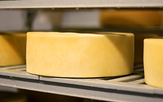 Alpindon: BC Mountain Cheese