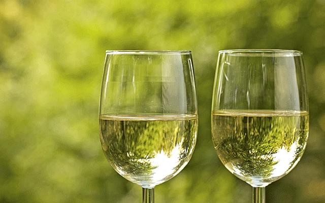 Top 10 : Sauvignon Blanc