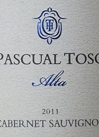 Pascual Toso Alta Cabernet Sauvignon Las Barrancas Vineyardstext