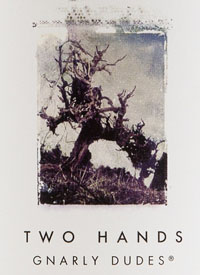 Two Hands Gnarly Dudestext
