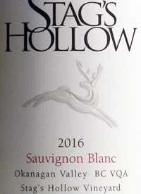 Stag's Hollow Sauvignon Blanc Vineyardtext