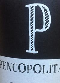 Pedro Parra y Familia Pencopolitano