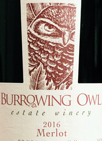 Burrowing Owl Merlottext