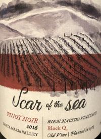 Scar of the Sea Bien Nacido Vineyard Block Q Old Vine Pinot Noirtext