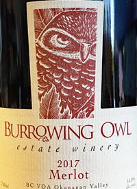 Burrowing Owl Merlottext