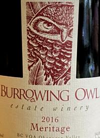 Burrowing Owl Meritagetext