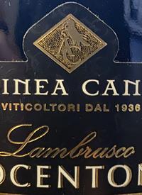 Albinea Canali Ottocentonero Lambrusco Dell'Emilia Vino Frizzante