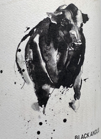 Black Angus Cabernet Sauvignon Single Vineyard Heathcotetext
